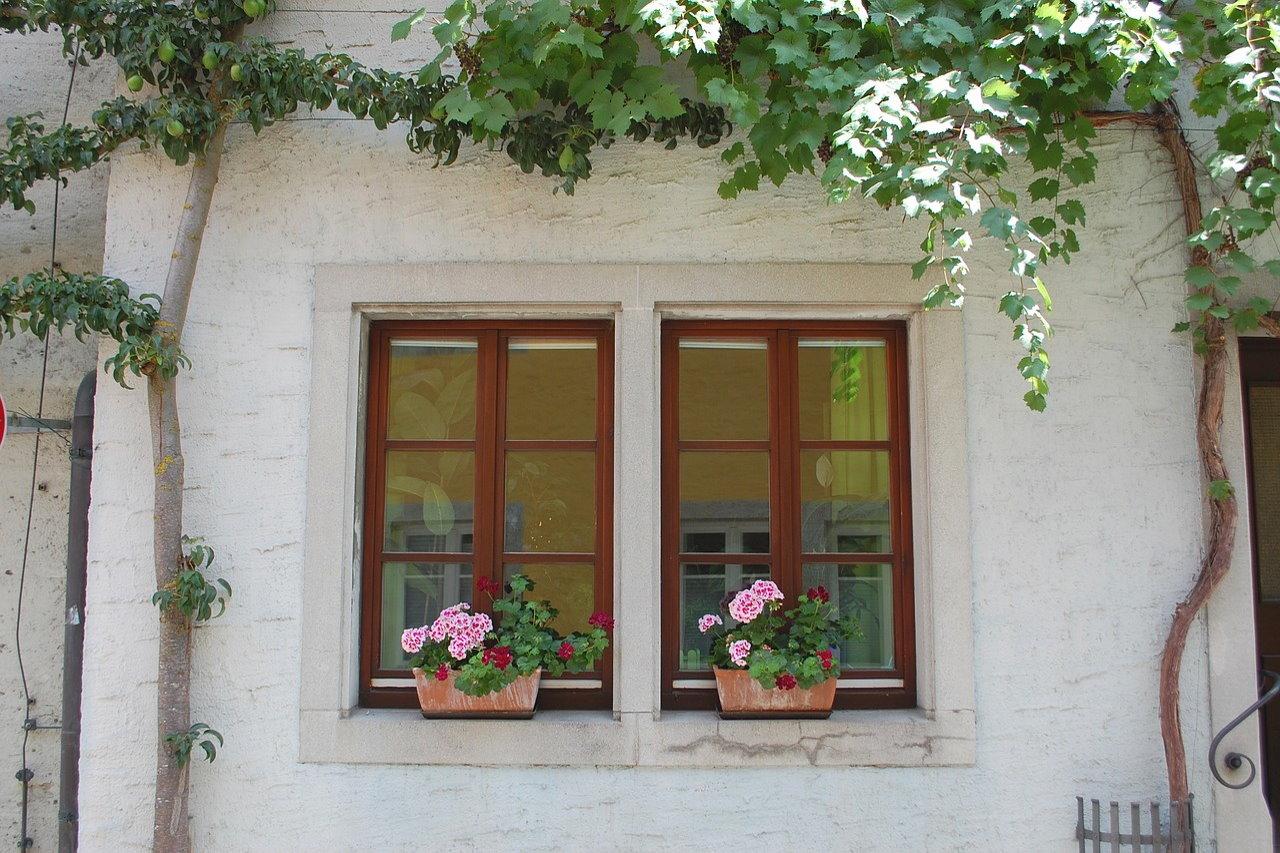 Specjalne okna